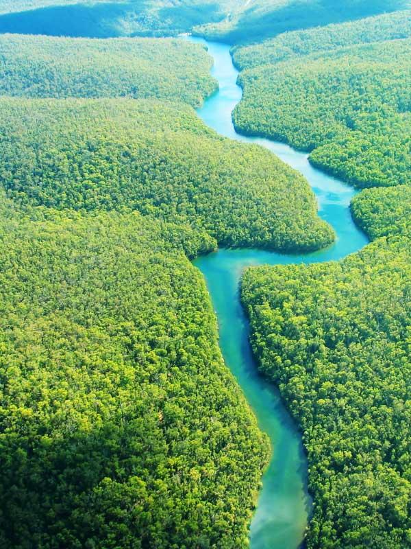 rzeka amazonka z lotu ptaka