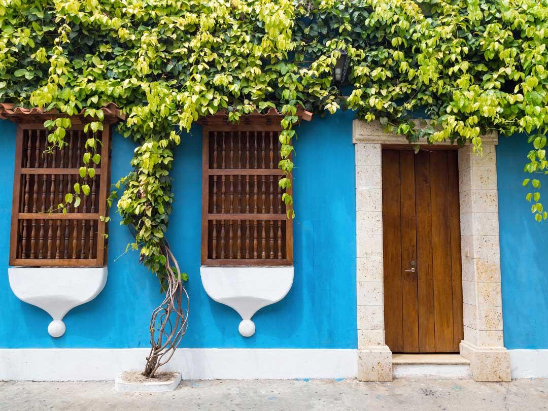 Niebieska fasada domu kontrastuje z roślinnością