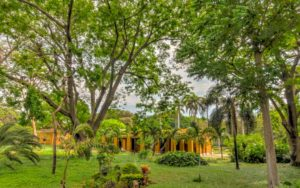 żólte ściany kolonialnego budynku w zielonym ogrodzie