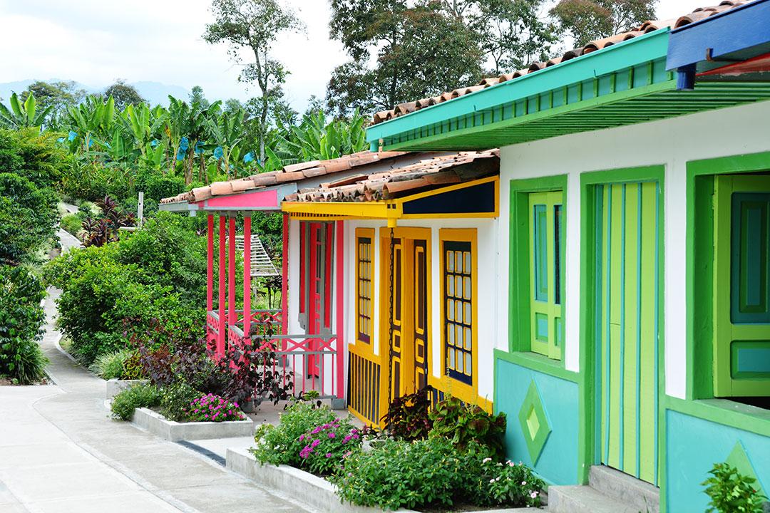 Kolorowe kolonialne domy z uprawą kawy w tle