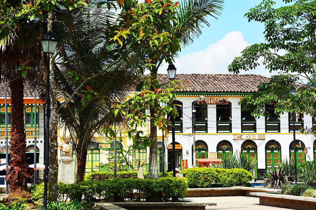 Główny plac miasta z palmami i kolonialną zabudową