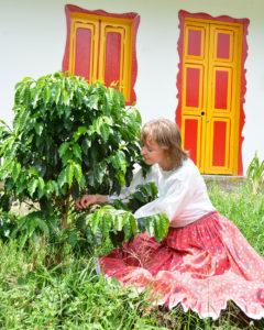 Kobieta ubrana w tradycyjny strój klęczy przy drzewku kawy