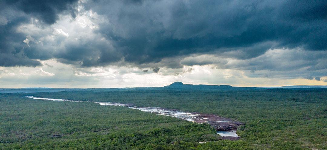 Amazonia z lotu ptaka i widok na dopływ rzeki