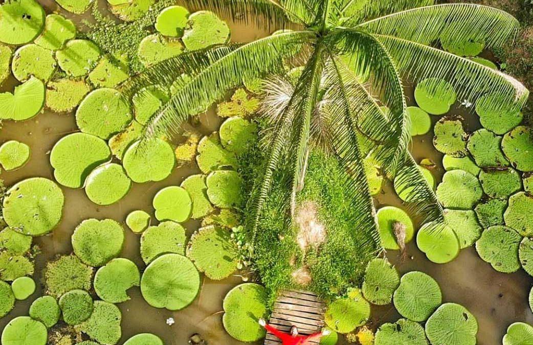 10 rzeczy, które trzeba przeżyć w kolumbijskiej Amazonii
