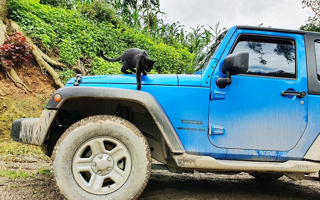 Czy można jeździć na zagranicznym prawie jazdy w Kolumbii